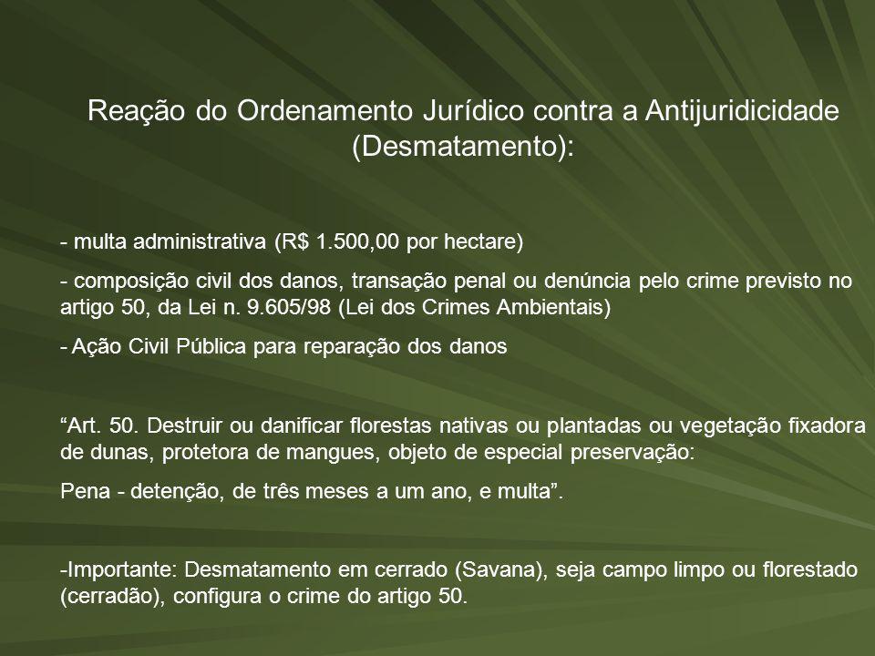 Reação do Ordenamento Jurídico contra a Antijuridicidade (Desmatamento):