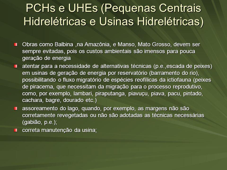 PCHs e UHEs (Pequenas Centrais Hidrelétricas e Usinas Hidrelétricas)