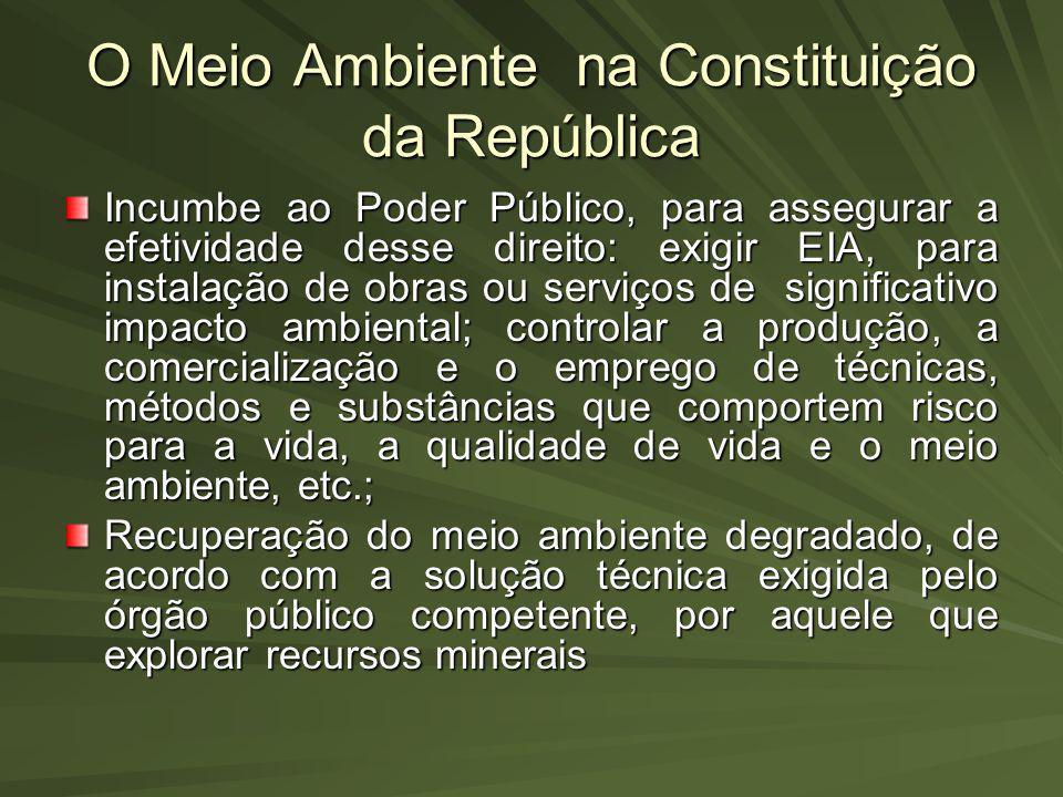 O Meio Ambiente na Constituição da República