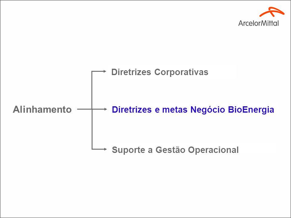 Objetivos da ArcelorMittal BioEnergia ( estratégia)