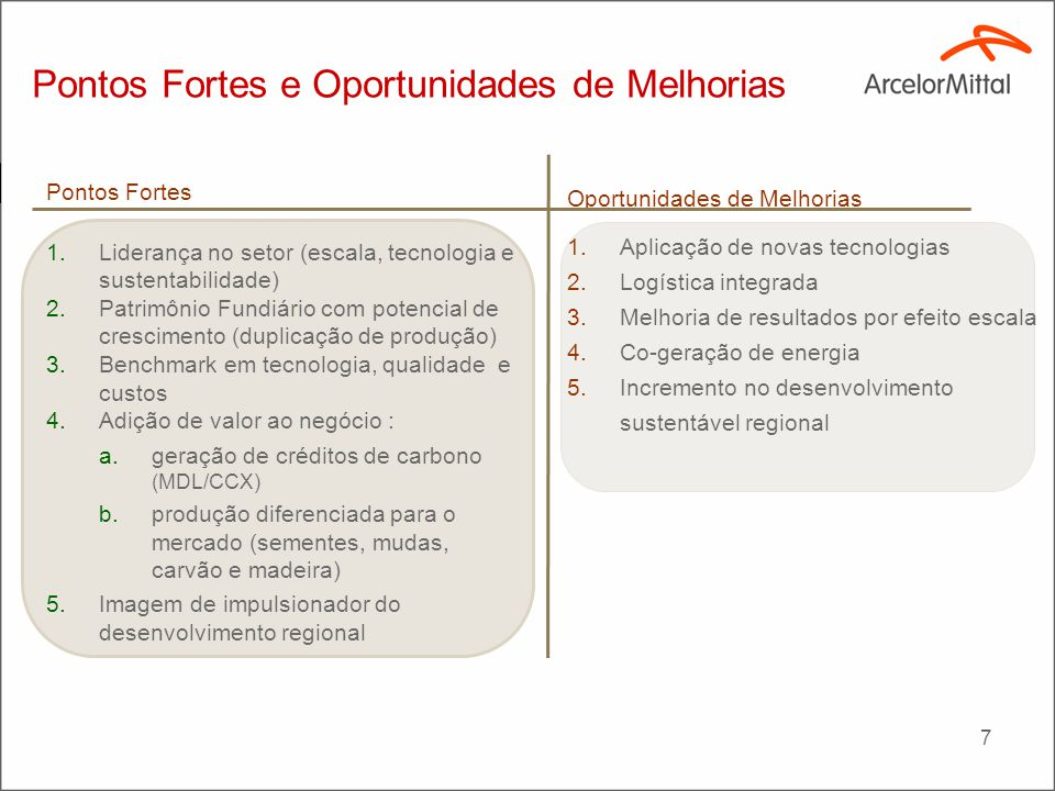 Dimensões da ArcelorMittal BioEnergia