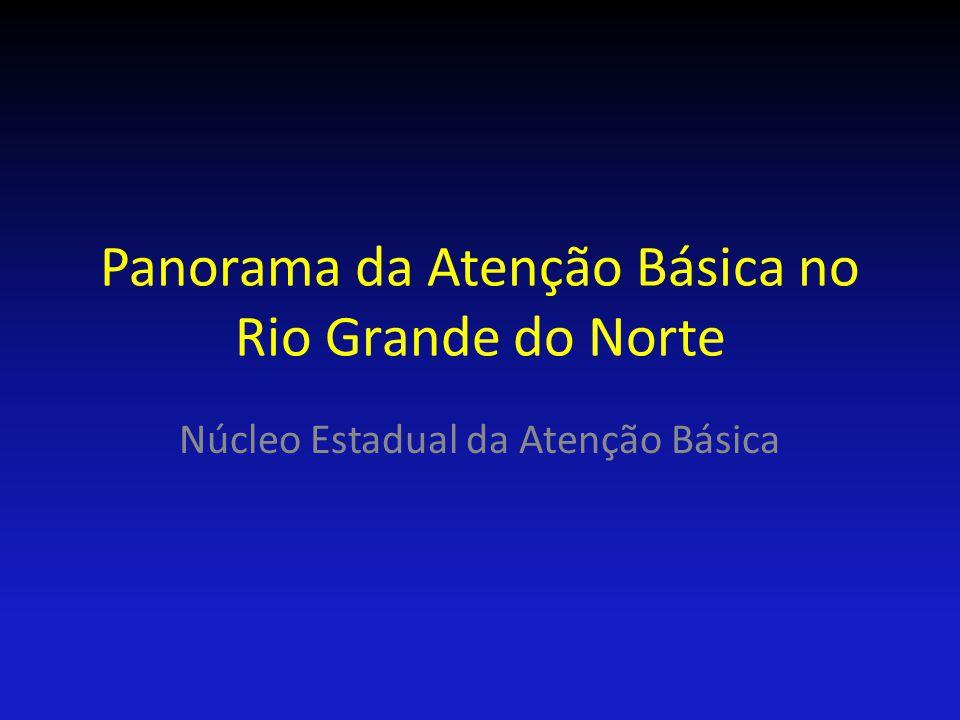 Panorama da Atenção Básica no Rio Grande do Norte