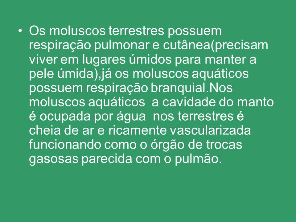 Os moluscos terrestres possuem respiração pulmonar e cutânea(precisam viver em lugares úmidos para manter a pele úmida),já os moluscos aquáticos possuem respiração branquial.Nos moluscos aquáticos a cavidade do manto é ocupada por água nos terrestres é cheia de ar e ricamente vascularizada funcionando como o órgão de trocas gasosas parecida com o pulmão.
