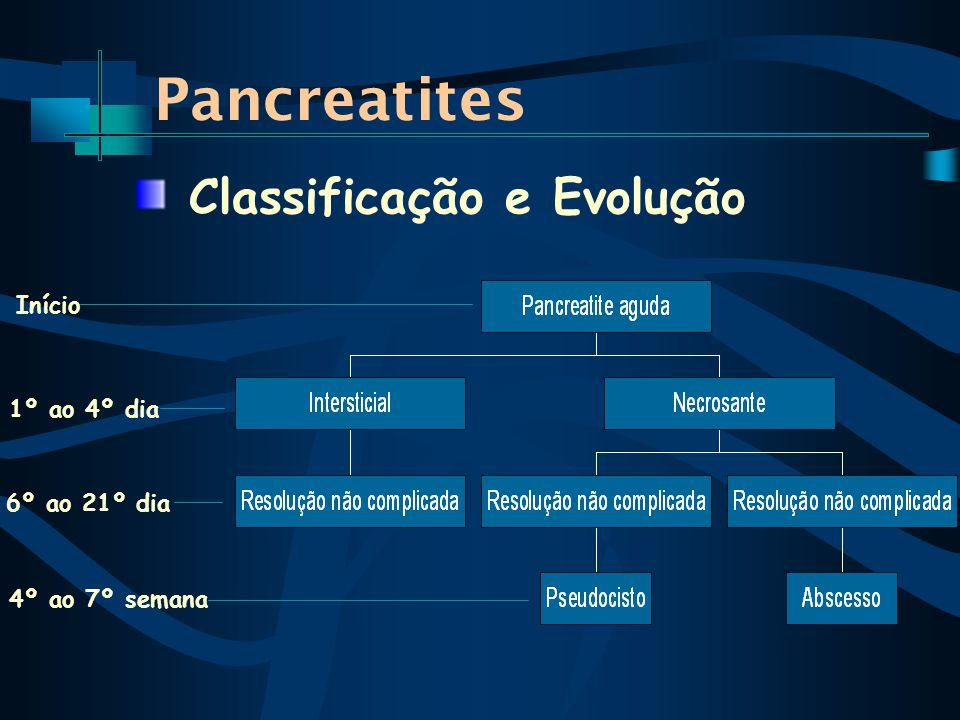 Classificação e Evolução