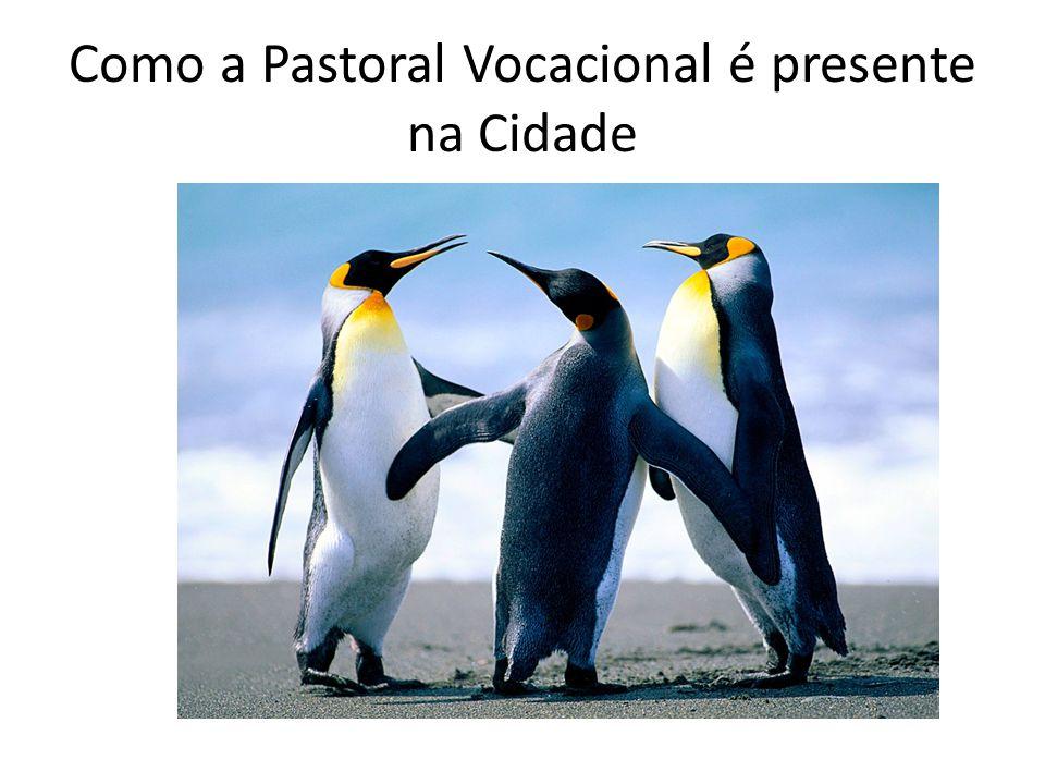 Como a Pastoral Vocacional é presente na Cidade