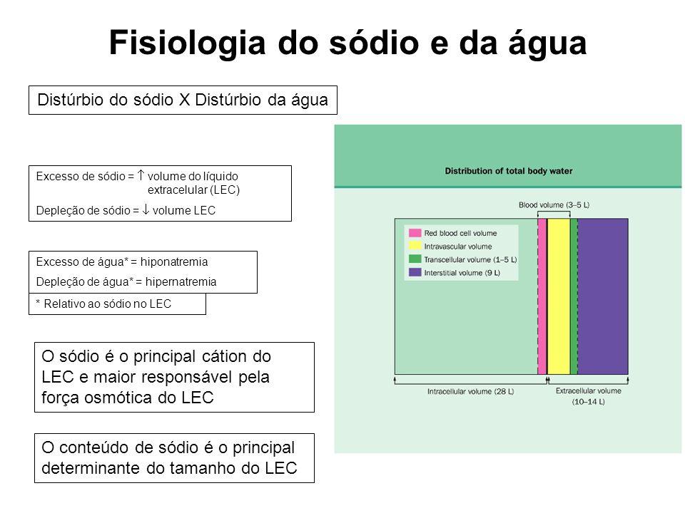 Fisiologia do sódio e da água
