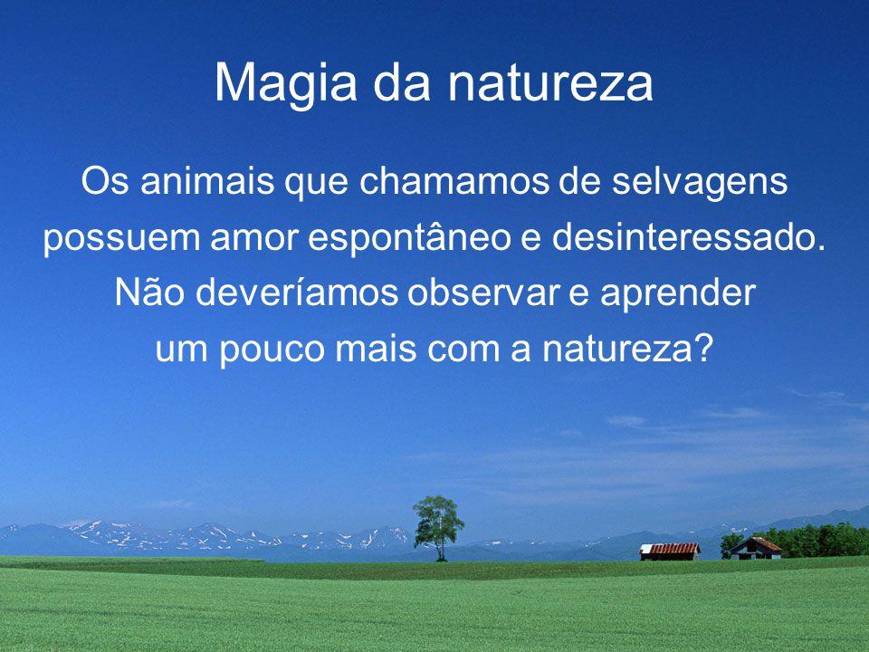Magia da natureza