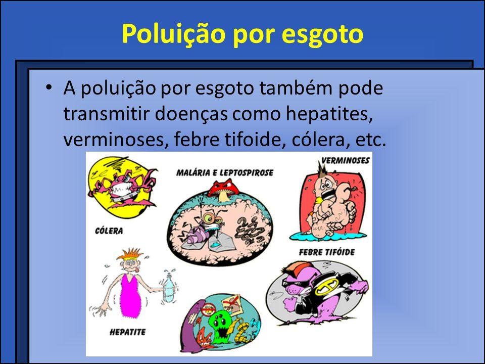 Poluição por esgoto A poluição por esgoto também pode transmitir doenças como hepatites, verminoses, febre tifoide, cólera, etc.
