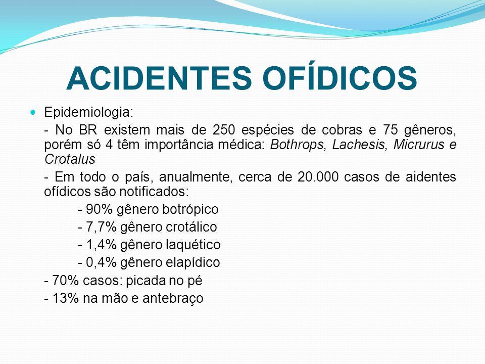 ACIDENTES OFÍDICOS Epidemiologia: