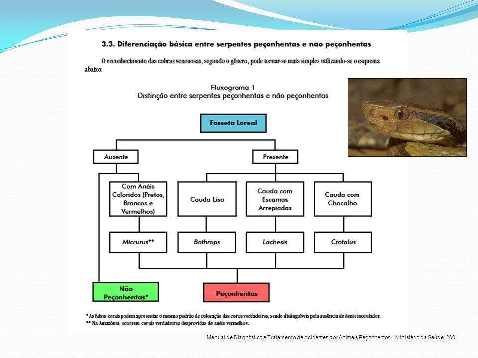 Manual de Diagnóstico e Tratamento de Acidentes por Animais Peçonhentos – Ministério da Saúde, 2001