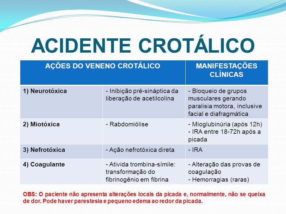 AÇÕES DO VENENO CROTÁLICO MANIFESTAÇÕES CLÍNICAS