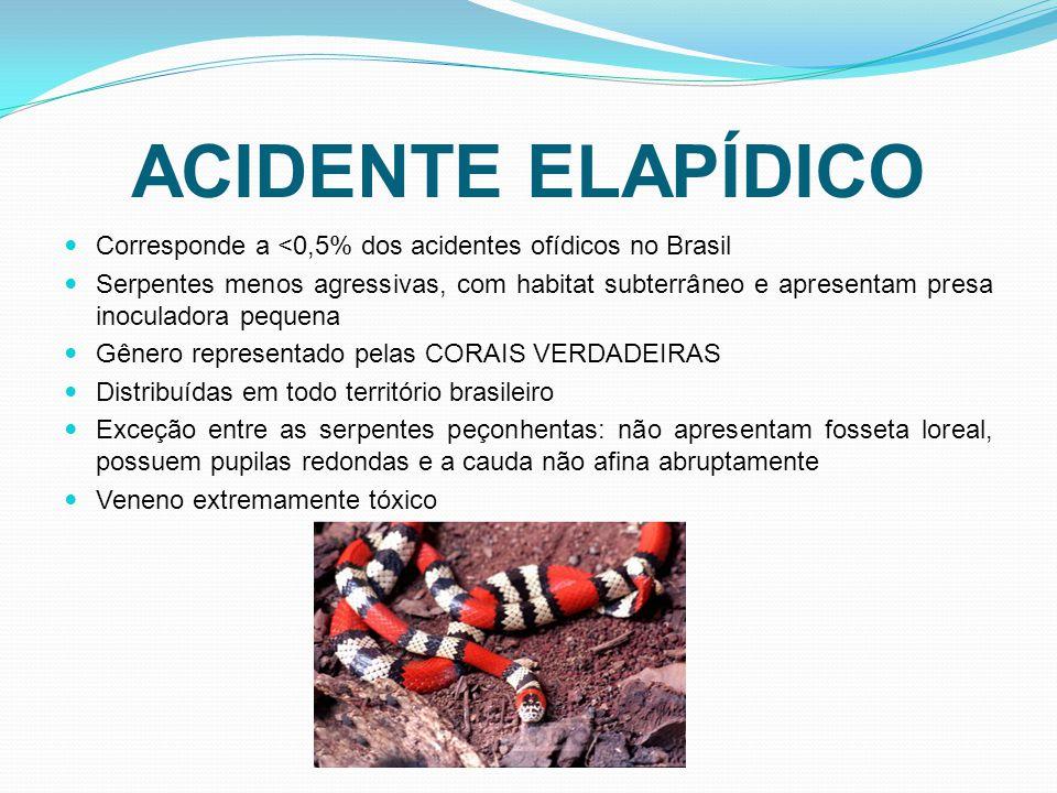ACIDENTE ELAPÍDICO Corresponde a <0,5% dos acidentes ofídicos no Brasil.