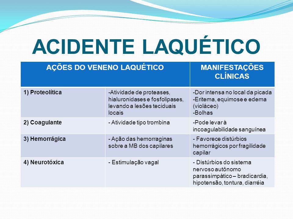 AÇÕES DO VENENO LAQUÉTICO MANIFESTAÇÕES CLÍNICAS