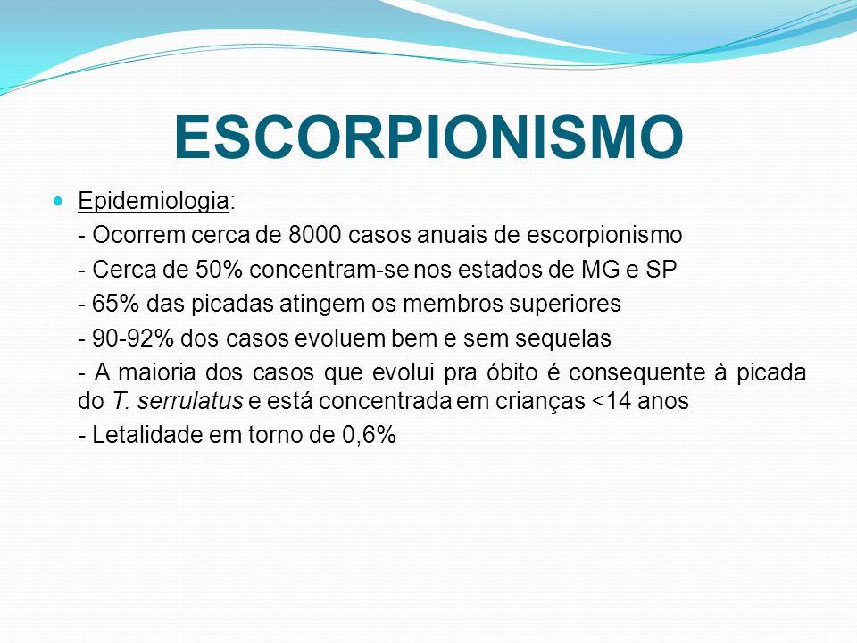 ESCORPIONISMO Epidemiologia:
