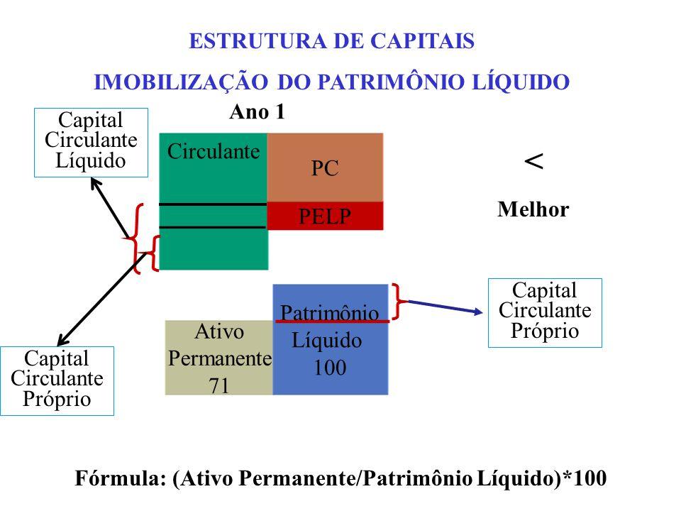 < ESTRUTURA DE CAPITAIS IMOBILIZAÇÃO DO PATRIMÔNIO LÍQUIDO Ano 1