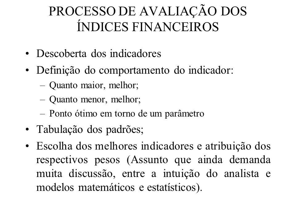PROCESSO DE AVALIAÇÃO DOS ÍNDICES FINANCEIROS