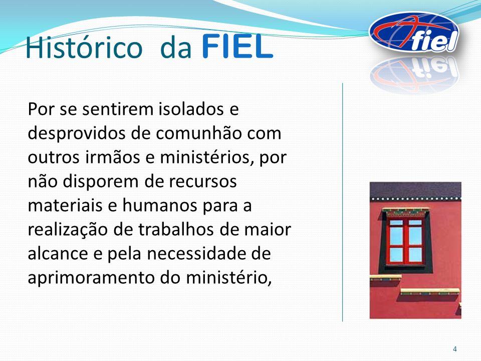 Histórico da FIEL