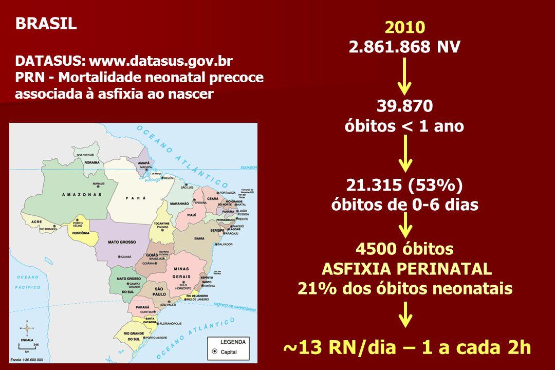 ~13 RN/dia – 1 a cada 2h BRASIL 2010 2.861.868 NV 39.870
