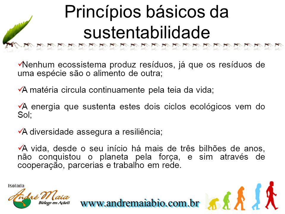 Princípios básicos da sustentabilidade
