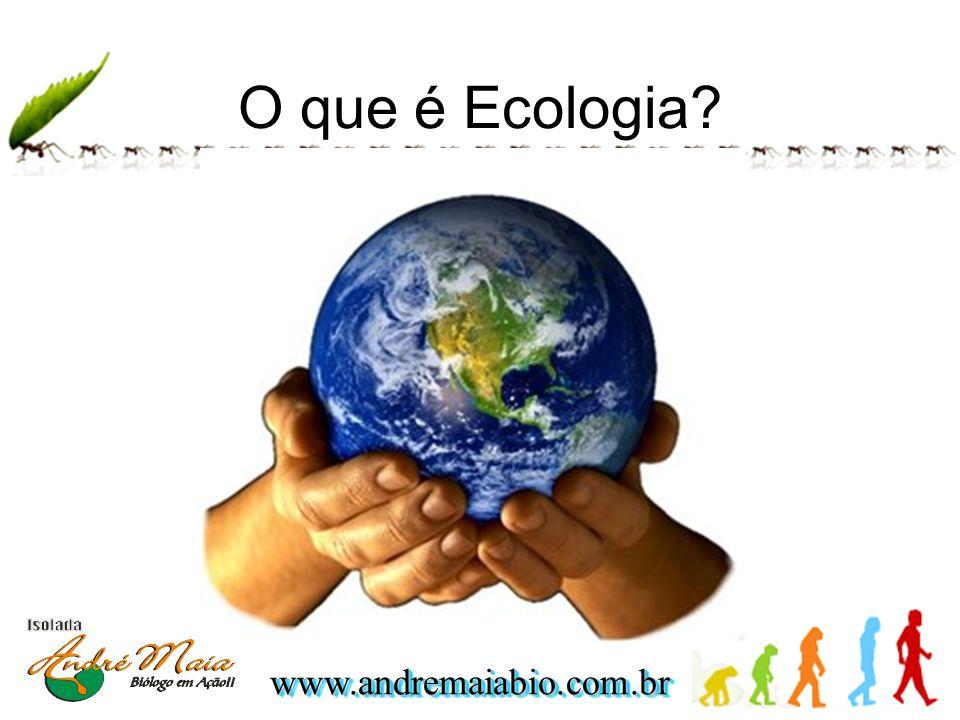 O que é Ecologia