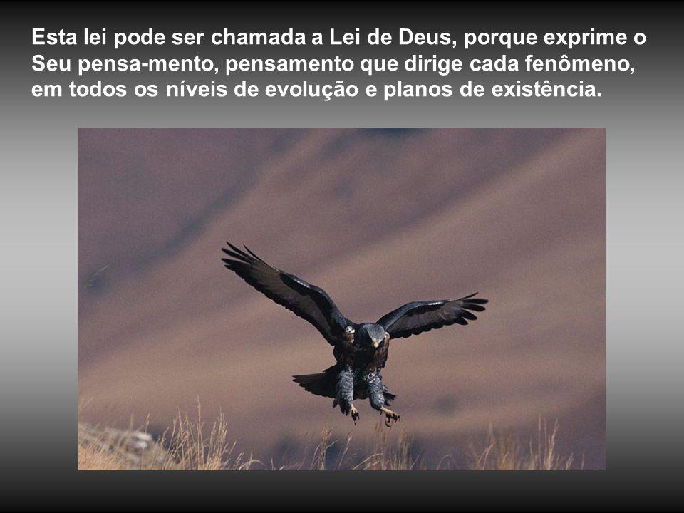 Esta lei pode ser chamada a Lei de Deus, porque exprime o Seu pensa-mento, pensamento que dirige cada fenômeno, em todos os níveis de evolução e planos de existência.