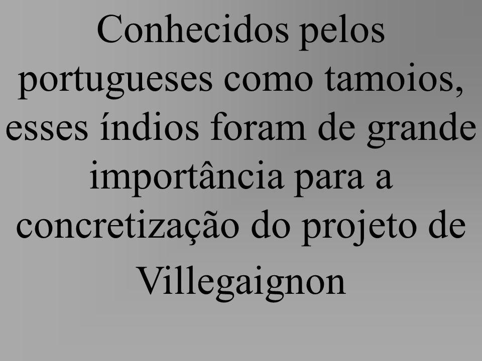 Conhecidos pelos portugueses como tamoios, esses índios foram de grande importância para a concretização do projeto de Villegaignon