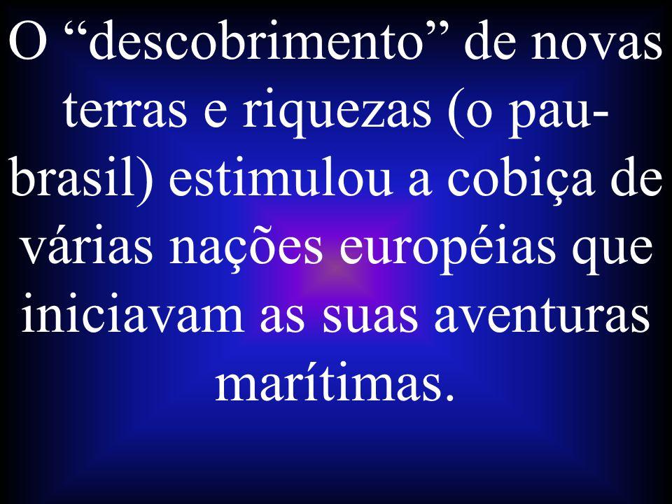 O descobrimento de novas terras e riquezas (o pau-brasil) estimulou a cobiça de várias nações européias que iniciavam as suas aventuras marítimas.