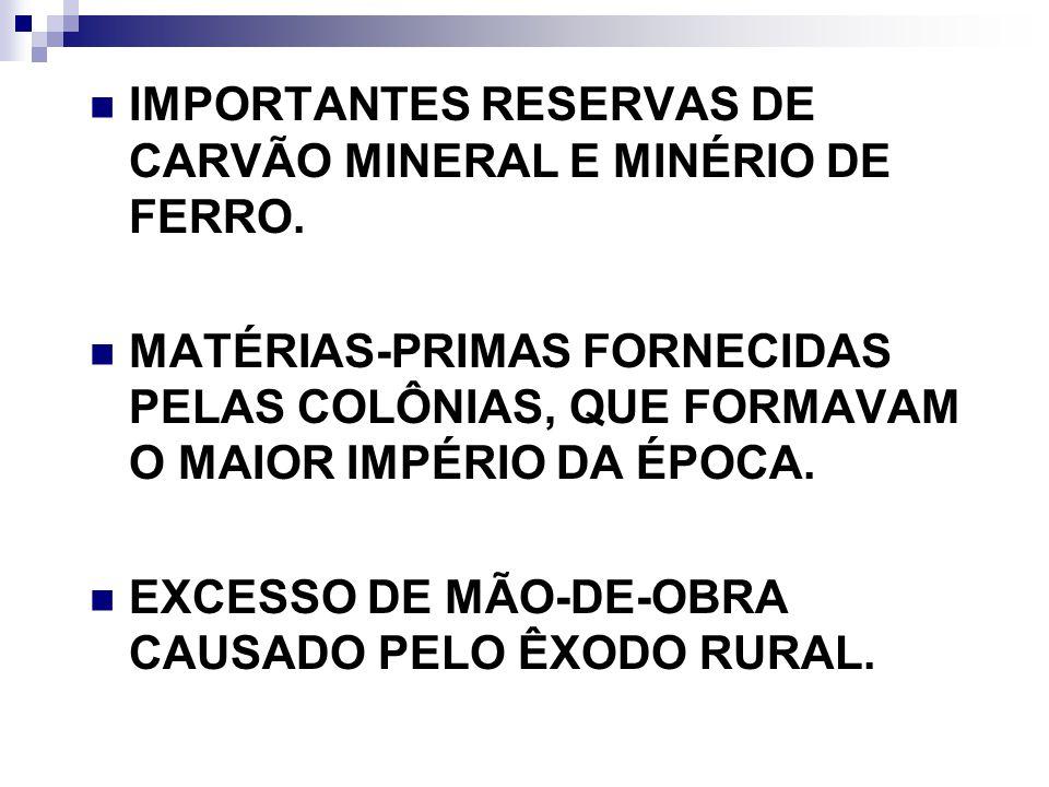 IMPORTANTES RESERVAS DE CARVÃO MINERAL E MINÉRIO DE FERRO.