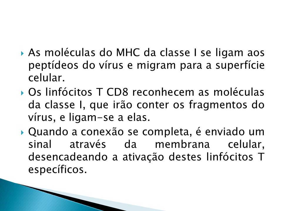 As moléculas do MHC da classe I se ligam aos peptídeos do vírus e migram para a superfície celular.