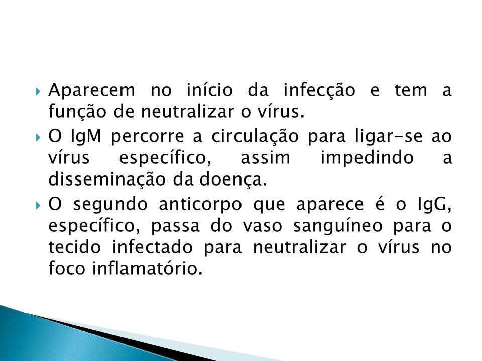 Aparecem no início da infecção e tem a função de neutralizar o vírus.