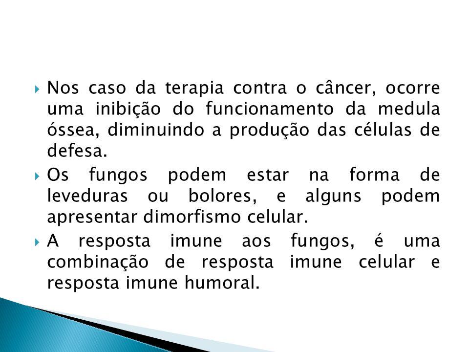 Nos caso da terapia contra o câncer, ocorre uma inibição do funcionamento da medula óssea, diminuindo a produção das células de defesa.