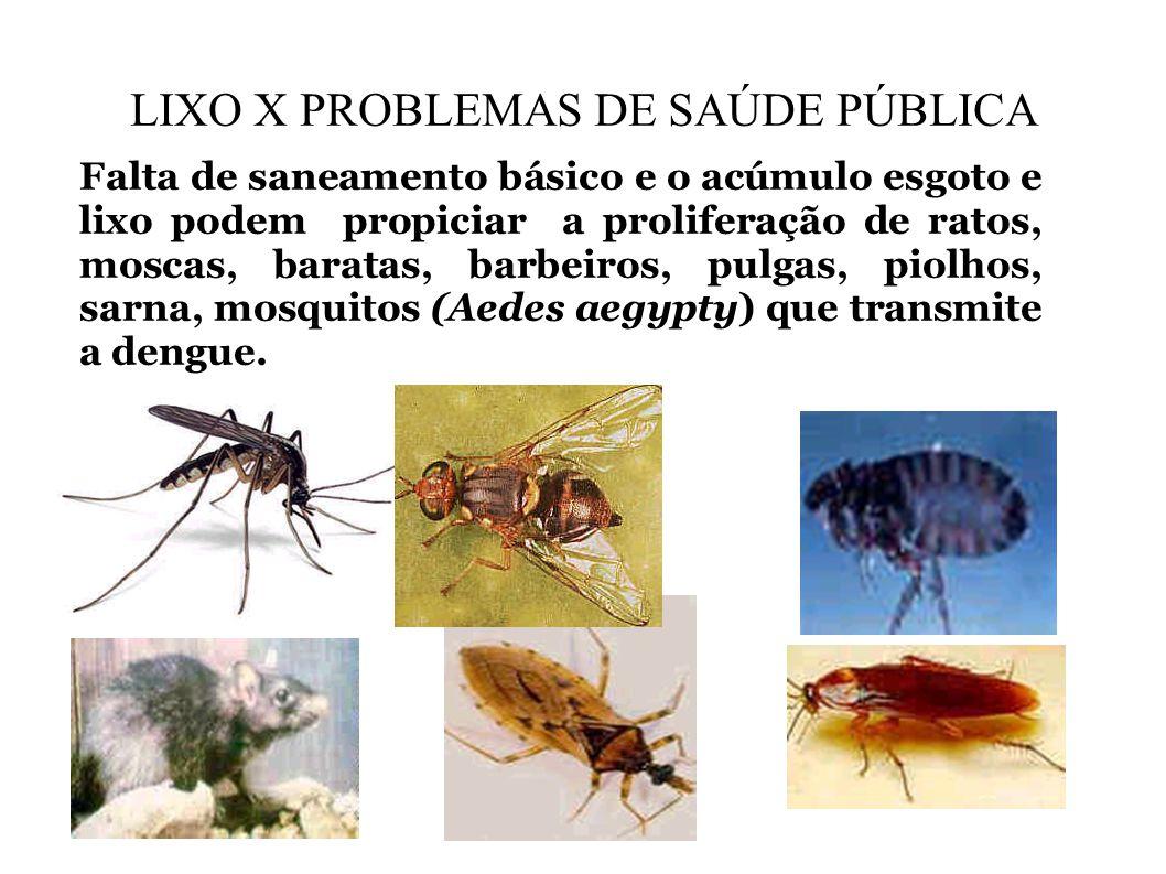 LIXO X PROBLEMAS DE SAÚDE PÚBLICA