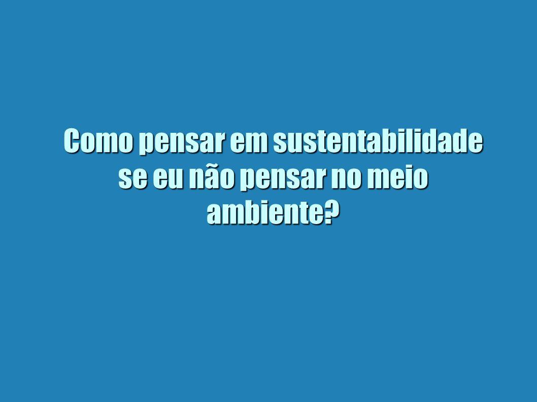 Como pensar em sustentabilidade se eu não pensar no meio ambiente