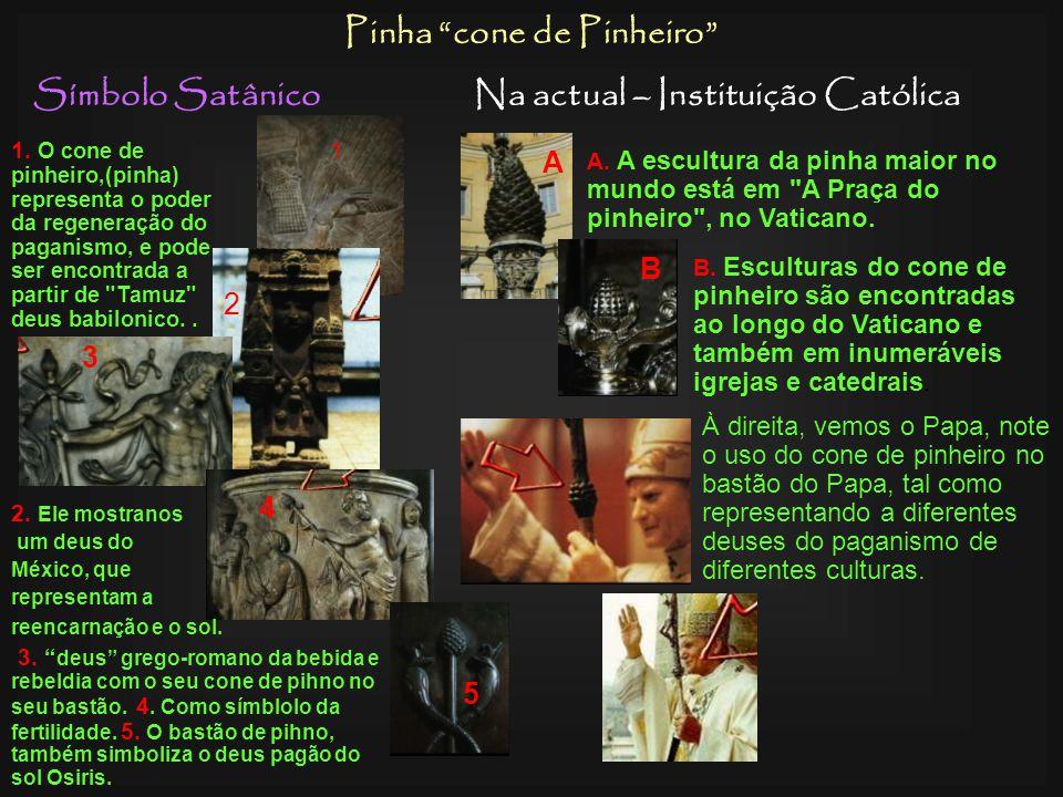Pinha cone de Pinheiro Na actual – Instituição Católica