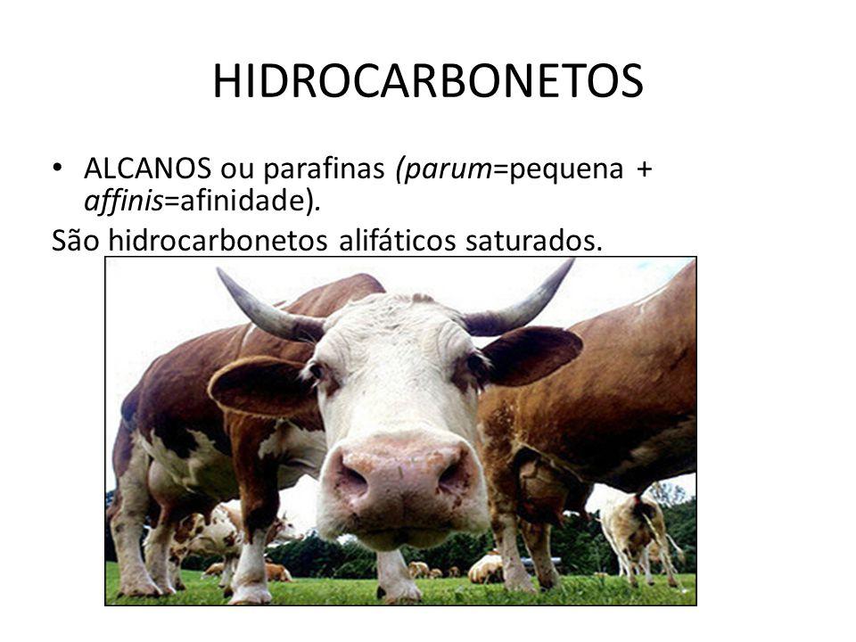 HIDROCARBONETOS ALCANOS ou parafinas (parum=pequena + affinis=afinidade).