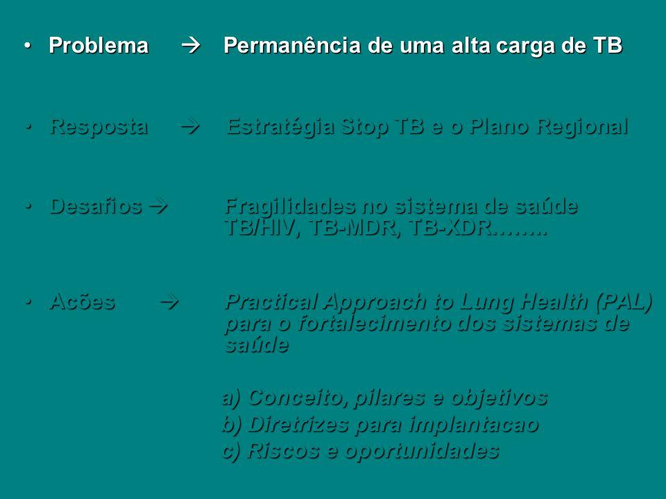 Problema  Permanência de uma alta carga de TB