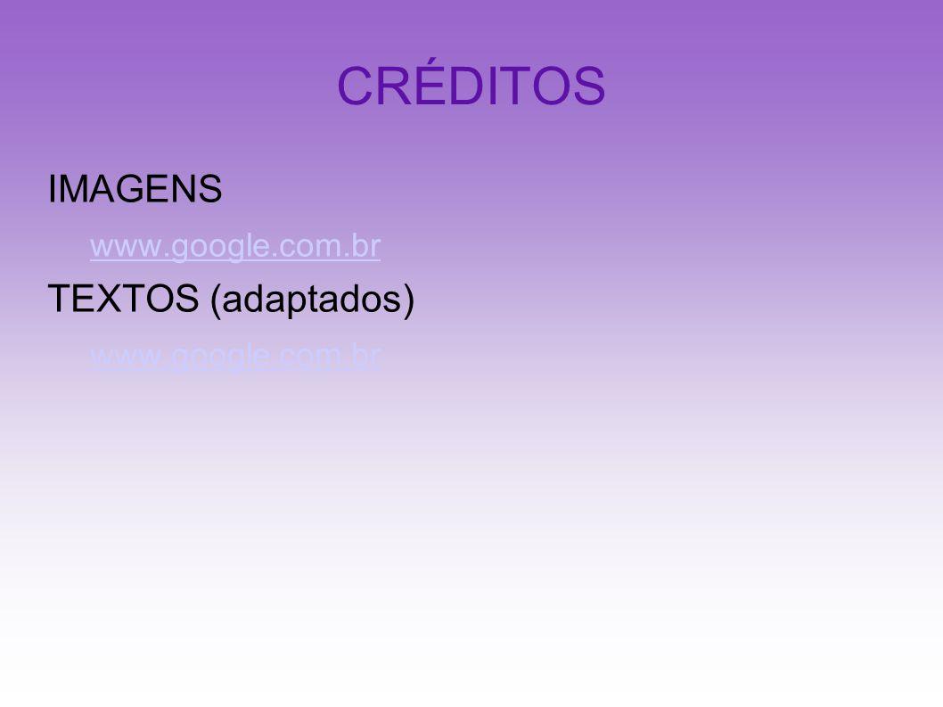 CRÉDITOS IMAGENS www.google.com.br TEXTOS (adaptados)
