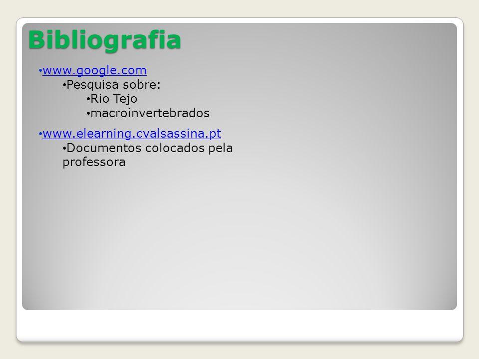 Bibliografia www.google.com Pesquisa sobre: Rio Tejo