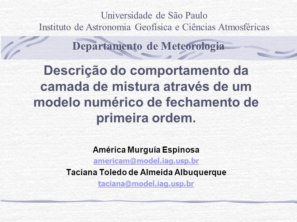 América Murguía Espinosa Taciana Toledo de Almeida Albuquerque