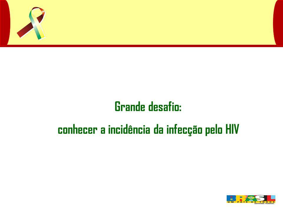 Grande desafio: conhecer a incidência da infecção pelo HIV