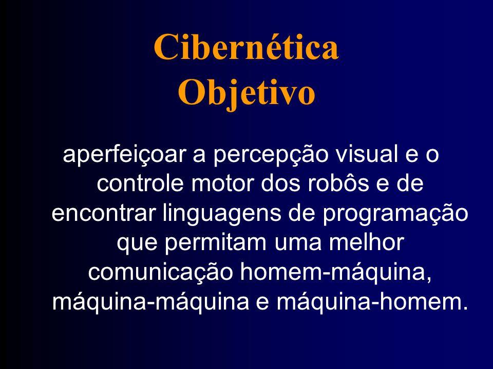 Cibernética Objetivo