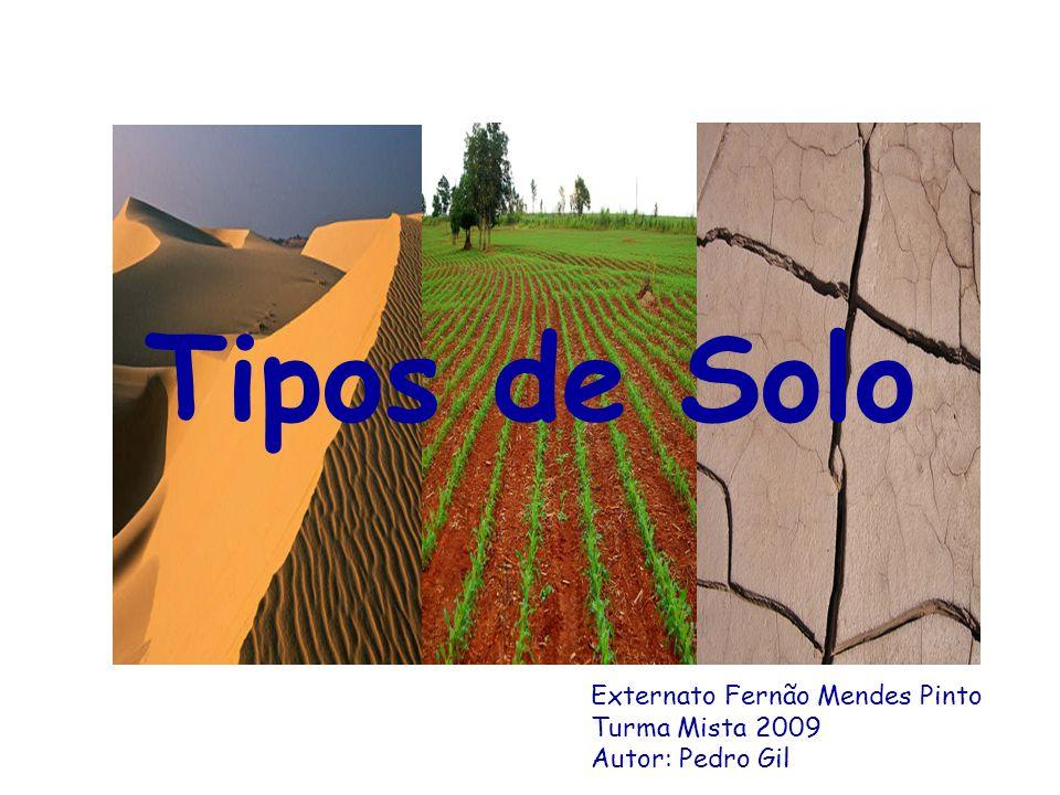 Tipos de Solo Externato Fernão Mendes Pinto Turma Mista 2009