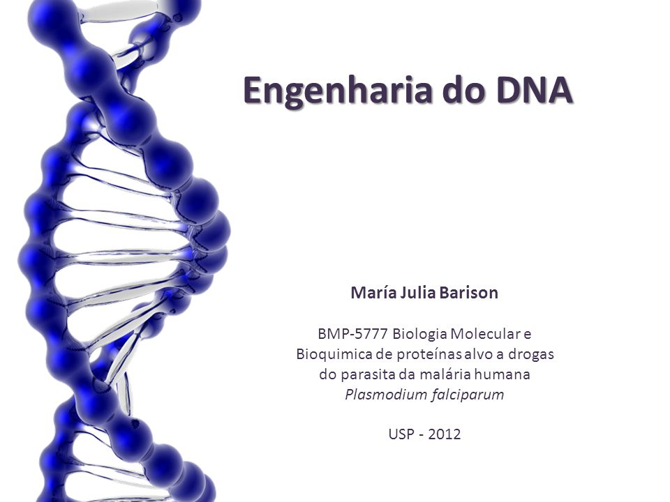 Engenharia do DNA María Julia Barison