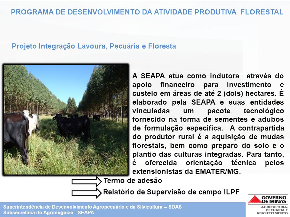 Relatório de Supervisão de campo ILPF