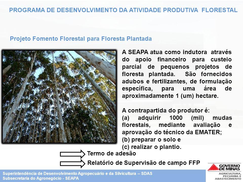 Relatório de Supervisão de campo FFP