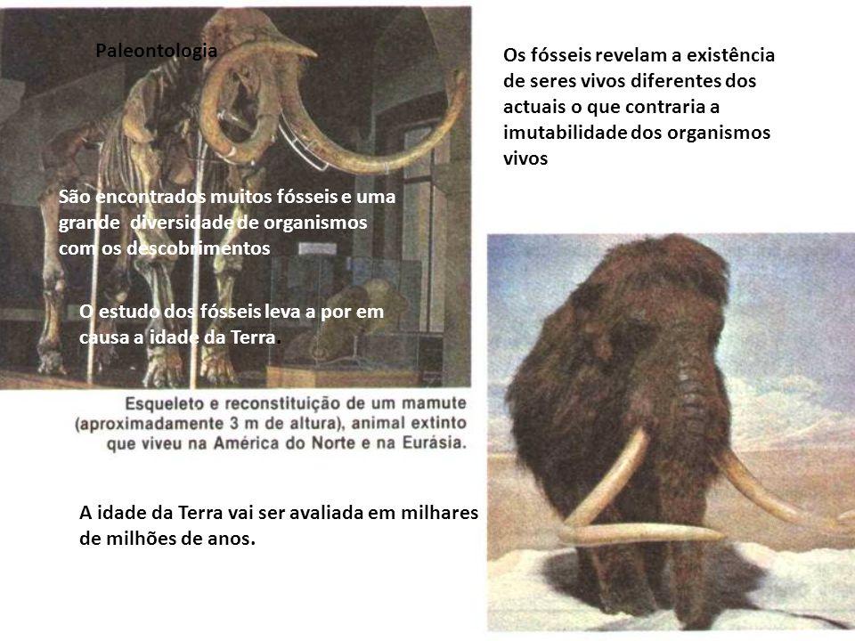 Paleontologia Os fósseis revelam a existência de seres vivos diferentes dos actuais o que contraria a imutabilidade dos organismos vivos.