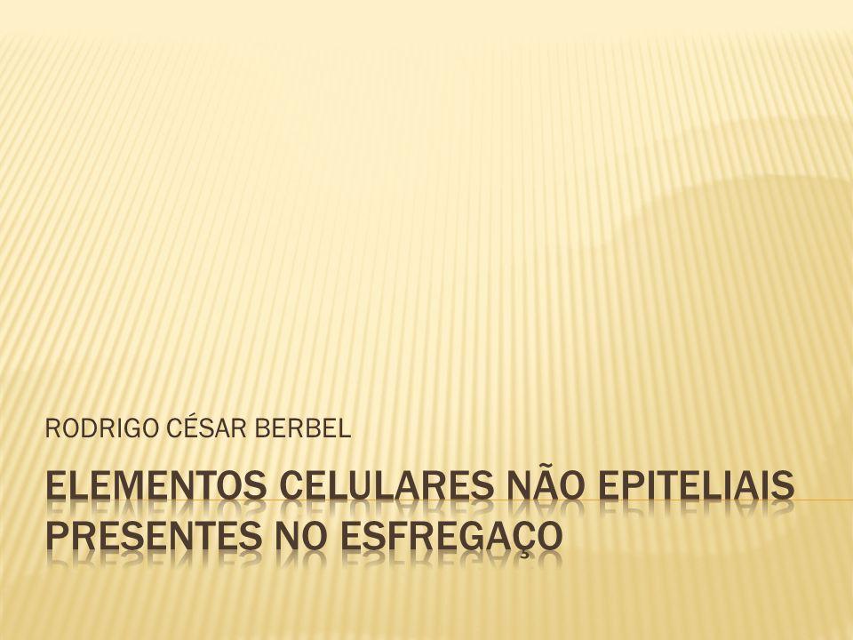 ELEMENTOS CELULARES NÃO EPITELIAIS PRESENTES NO ESFREGAÇO