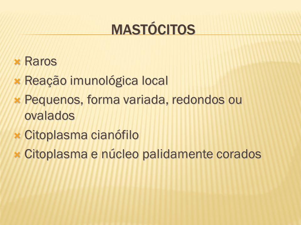 Mastócitos Raros Reação imunológica local