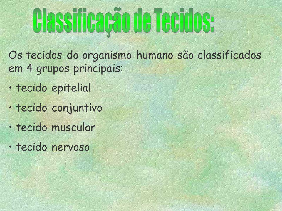 Classificação de Tecidos: