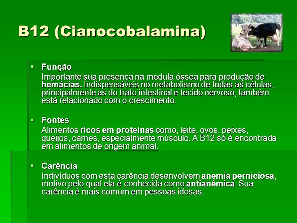 B12 (Cianocobalamina) Função